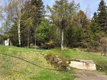 Terrain à vendre à La Baie (Saguenay), Saguenay/Lac-Saint-Jean, Rue  Victoria, 23731858 - Centris.ca