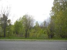 Lot for sale in Low, Outaouais, Chemin de Fieldville, 10422990 - Centris