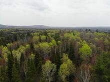 Lot for sale in L'Ascension, Laurentides, Chemin de la Rivière-Rouge, 19848161 - Centris.ca