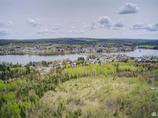 Terre à vendre à Disraeli - Ville, Chaudière-Appalaches, Chemin de la Croix, 28942643 - Centris.ca