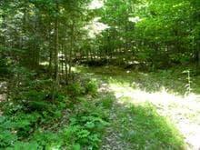 Terrain à vendre à Sainte-Anne-des-Lacs, Laurentides, Chemin des Oies, 22783930 - Centris.ca