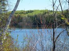 Terrain à vendre à Saguenay (Lac-Kénogami), Saguenay/Lac-Saint-Jean, Chemin des Pionniers, 24936171 - Centris.ca