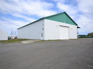 Local commercial à louer à Rivière-du-Loup, Bas-Saint-Laurent, 409B, Rue  Témiscouata, 25879169 - Centris.ca