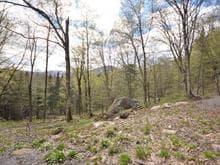 Terre à vendre à Lac-Supérieur, Laurentides, Impasse des Alpinistes, 28591225 - Centris