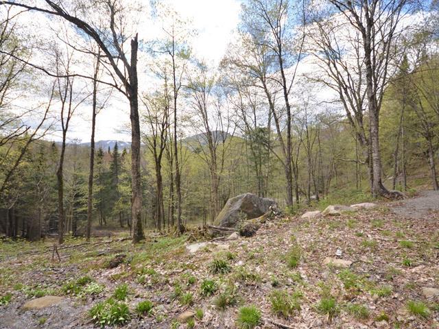 Terre à vendre à Lac-Supérieur, Laurentides, Impasse des Alpinistes, 28591225 - Centris.ca