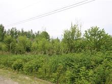 Lot for sale in Rivière-Héva, Abitibi-Témiscamingue, Rue  Authier, 9450334 - Centris.ca