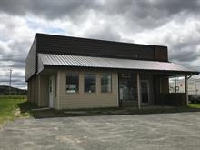 Bâtisse commerciale à vendre à Ham-Nord, Centre-du-Québec, 210, 1re Avenue, 10374774 - Centris.ca