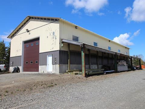 Bâtisse commerciale à vendre à Saint-Eugène-de-Ladrière, Bas-Saint-Laurent, 271, Rue  Principale, 28435701 - Centris.ca
