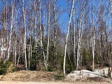 Lot for sale in Saguenay (Laterrière), Saguenay/Lac-Saint-Jean, Rue du Vert-Bois, 10710989 - Centris.ca