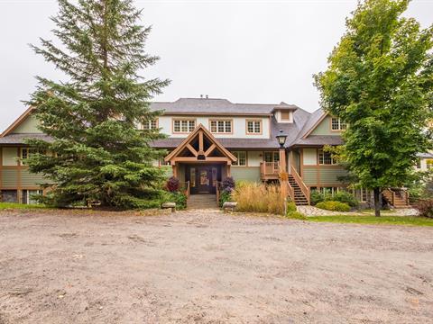 Condo / Apartment for rent in Mont-Tremblant, Laurentides, 134, Chemin de la Forêt, apt. 7, 12519824 - Centris.ca