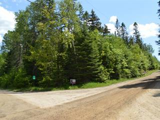 Terre à vendre à Boileau, Outaouais, Chemin  Woodbury, 14573577 - Centris.ca