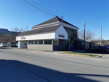 Bâtisse commerciale à vendre à Saint-Georges, Chaudière-Appalaches, 11650, 2e Avenue, 24087996 - Centris.ca