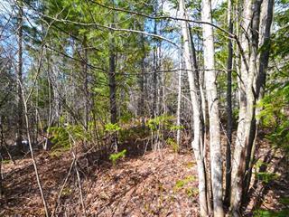 Land for sale in Saint-Joseph-de-Coleraine, Chaudière-Appalaches, Route du 6e Rang, 13642847 - Centris.ca