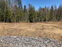 Lot for sale in Rawdon, Lanaudière, Rue des Colibris, 25663925 - Centris.ca