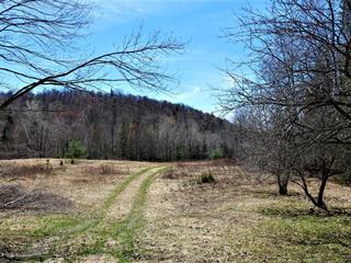 Terrain à vendre à Saint-Faustin/Lac-Carré, Laurentides, Chemin du Lac-Caribou, 25585611 - Centris.ca