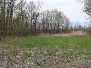 Terrain à vendre à Sainte-Barbe, Montérégie, 45e Avenue, 28805379 - Centris.ca