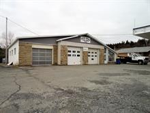 Bâtisse commerciale à vendre à Gaspé, Gaspésie/Îles-de-la-Madeleine, 139, boulevard  Renard Ouest, 27899164 - Centris.ca