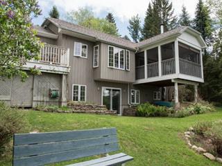 Maison à vendre à Labelle, Laurentides, 9730, Chemin du Lac-Labelle, 21646745 - Centris.ca
