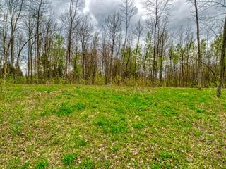 Lot for sale in Saint-Georges-de-Clarenceville, Montérégie, Rue  Remembrance, 18943955 - Centris.ca