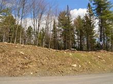 Terrain à vendre à Sainte-Anne-des-Lacs, Laurentides, Chemin des Rossignols, 11766565 - Centris.ca