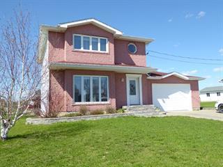 Maison à vendre à Ville-Marie, Abitibi-Témiscamingue, 10, Rue  Dubrûle Ouest, 22996499 - Centris.ca