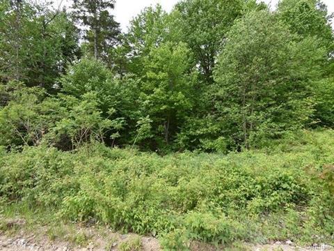 Terrain à vendre à Alleyn-et-Cawood, Outaouais, Chemin  Balm of Gilead, 27867436 - Centris.ca
