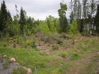 Terrain à vendre à Saint-Donat (Lanaudière), Lanaudière, Rue des Bois, 23667802 - Centris.ca