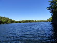Terrain à vendre à Amherst, Laurentides, Chemin du Lac-de-la-Grange, 17330340 - Centris.ca