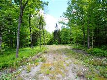Terrain à vendre à Beaulac-Garthby, Chaudière-Appalaches, Chemin  Groleau, 17933406 - Centris.ca