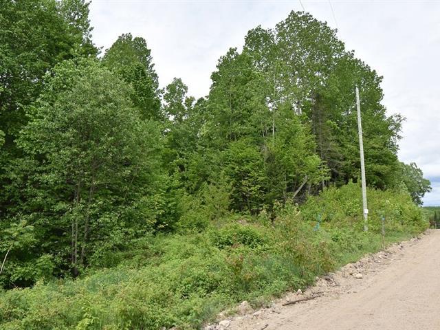 Lot for sale in Alleyn-et-Cawood, Outaouais, Chemin  Beauregard, 25412799 - Centris.ca