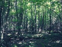 Lot for sale in Alleyn-et-Cawood, Outaouais, Chemin  Balm of Gilead, 19702559 - Centris.ca