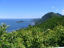 Lot for sale in Saint-Fabien, Bas-Saint-Laurent, Route de Porc-Pic, 27416057 - Centris.ca