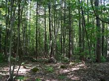 Lot for sale in Piedmont, Laurentides, Chemin de la Montagne, 13058645 - Centris