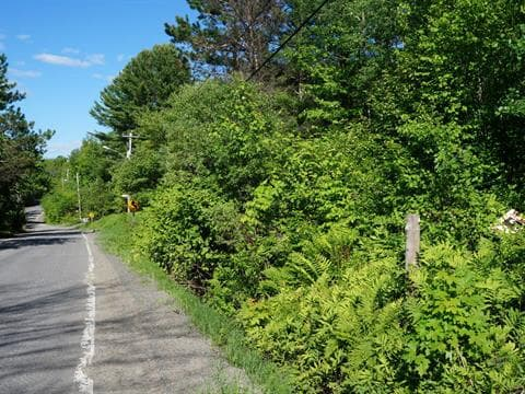 Lot for sale in Piedmont, Laurentides, Chemin de la Montagne, 26878753 - Centris.ca