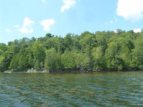 Terre à vendre à Low, Outaouais, Chemin  Higgins, 25628297 - Centris.ca