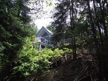 Maison à vendre à Messines, Outaouais, 113, Chemin  Petit-Lac-des-Cèdres Nord, 24403994 - Centris.ca