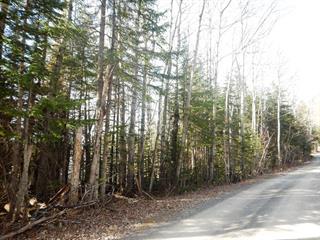 Terrain à vendre à Saint-Fabien, Bas-Saint-Laurent, 10, Chemin à Grand-Papa, 22363489 - Centris.ca