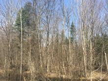 Terrain à vendre à Weedon, Estrie, Chemin  Rousseau, 18835603 - Centris.ca