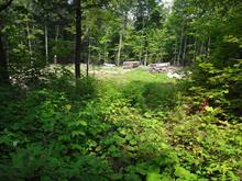 Terrain à vendre à Amherst, Laurentides, Chemin des Viornes, 26787585 - Centris.ca