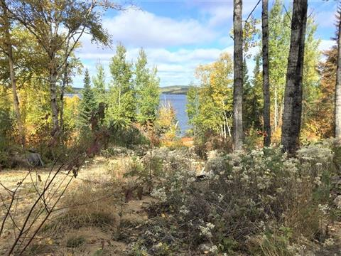 Lot for sale in Lac-Bouchette, Saguenay/Lac-Saint-Jean, 167, Chemin du Cap-de-la-Grêle, 10081144 - Centris.ca