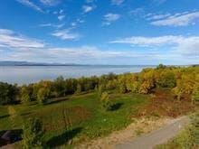 Terrain à vendre à L'Islet, Chaudière-Appalaches, Chemin des Pionniers Ouest, 24183247 - Centris.ca