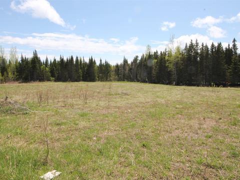 Terrain à vendre à Port-Daniel/Gascons, Gaspésie/Îles-de-la-Madeleine, Chemin à Pierre, 17244655 - Centris.ca