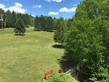 Lot for sale in Notre-Dame-du-Laus, Laurentides, 671, Chemin du Poisson-Blanc, 22382832 - Centris.ca