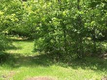 Lot for sale in Chertsey, Lanaudière, Avenue des Abeilles, 26184545 - Centris.ca