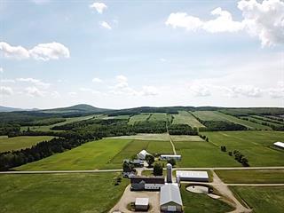 Land for sale in Saint-Rémi-de-Tingwick, Centre-du-Québec, 689Z, Rang  Leclerc, 23207520 - Centris.ca