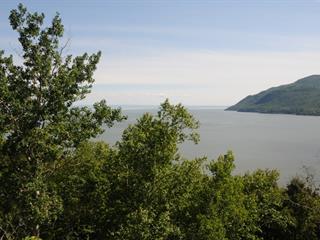 Terrain à vendre à Baie-Saint-Paul, Capitale-Nationale, Chemin de l'Amanda, 25076777 - Centris.ca