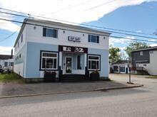 Bâtisse commerciale à vendre à Port-Cartier, Côte-Nord, 32, Rue  Plante, 9855062 - Centris.ca