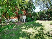 Terrain à vendre à Mercier/Hochelaga-Maisonneuve (Montréal), Montréal (Île), 8665, Rue  Thibodeau, 21364632 - Centris