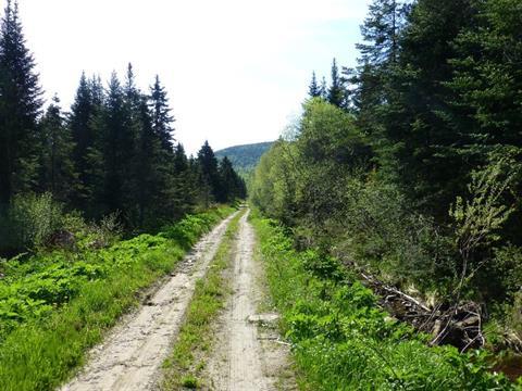 Terre à vendre à Sault-au-Cochon, Capitale-Nationale, Concession  Saint-Michel, 22216015 - Centris.ca