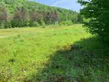 Lot for sale in Chute-Saint-Philippe, Laurentides, 244, Chemin des Lacs, 14735623 - Centris.ca